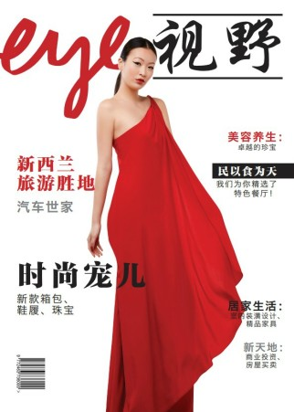 chinese-eye-cover